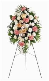 Pink & White Spray by Arrington Flowers, Your Rocky Mount, VA Florist