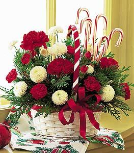Candy Cane Basket by Arrington Flowers, Your Rocky Mount, VA Florist