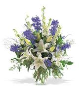 Hanukkah Arrangement by Arrington Flowers, Your Rocky Mount, VA Florist