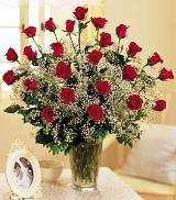 Field Of Roses by Arrington Flowers, Your Rocky Mount, VA Florist
