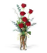 Six Red Roses by Arrington Flowers, Your Rocky Mount, VA Florist