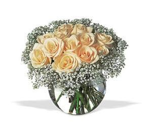 Dozen White Roses by Arrington Flowers, Your Rocky Mount, VA Florist