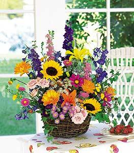 Summer Flower Basket by Arrington Flowers, Your Rocky Mount, VA Florist