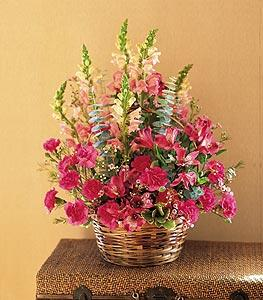 Basket with Mixed Pinks by Arrington Flowers, Your Rocky Mount, VA Florist