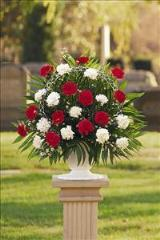 Red & White Carnation Basket by Arrington Flowers, Your Rocky Mount, VA Florist