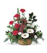 Carnation & Gerbera Basket by Arrington Flowers, Your Rocky Mount, VA Florist