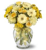 Sweet Sunshine by Arrington Flowers, Your Rocky Mount, VA Florist