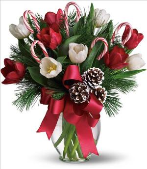 By Golly It's Jolly by Arrington Flowers, Your Rocky Mount, VA Florist