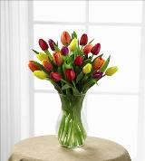 Mixed Tulips in vase by Arrington Flowers, Your Rocky Mount, VA Florist
