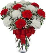 Red & White Carnations in Vase by Arrington Flowers, Your Rocky Mount, VA Florist