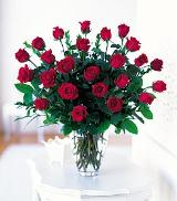 Two Dozen Red Roses by Arrington Flowers, Your Rocky Mount, VA Florist
