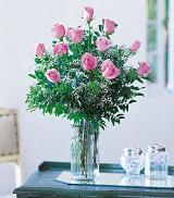 Dozen Pink Roses by Arrington Flowers, Your Rocky Mount, VA Florist